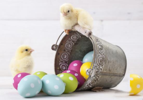 Easter Slideshow